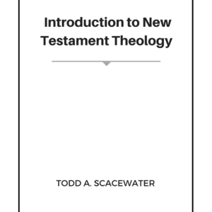 introduction-nt-theology